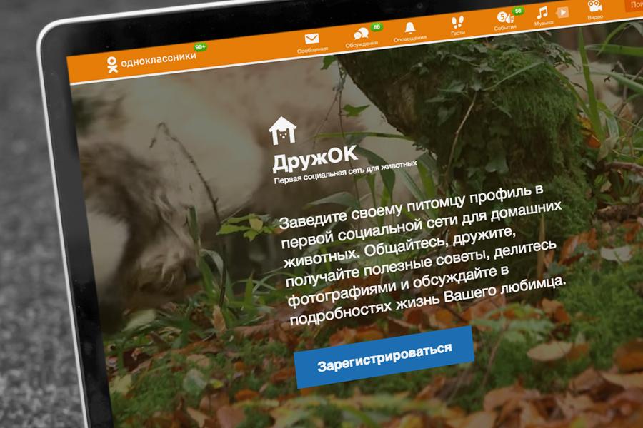 «Одноклассники» запустили соцсеть для домашних питомцев