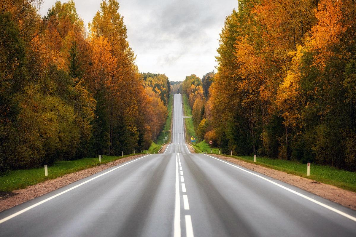 Государство выделит 3,3 млрд рублей на полное покрытие четырех автодорог сотовой связью